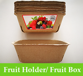 Fruit Holder/ Fruit Box