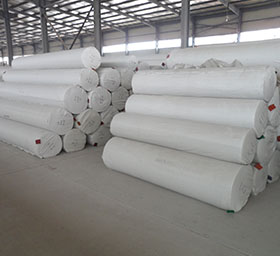 Nonwoven carpet